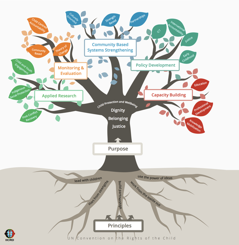 IICRD tree diagram to show purpose, principles and pathways of the organization